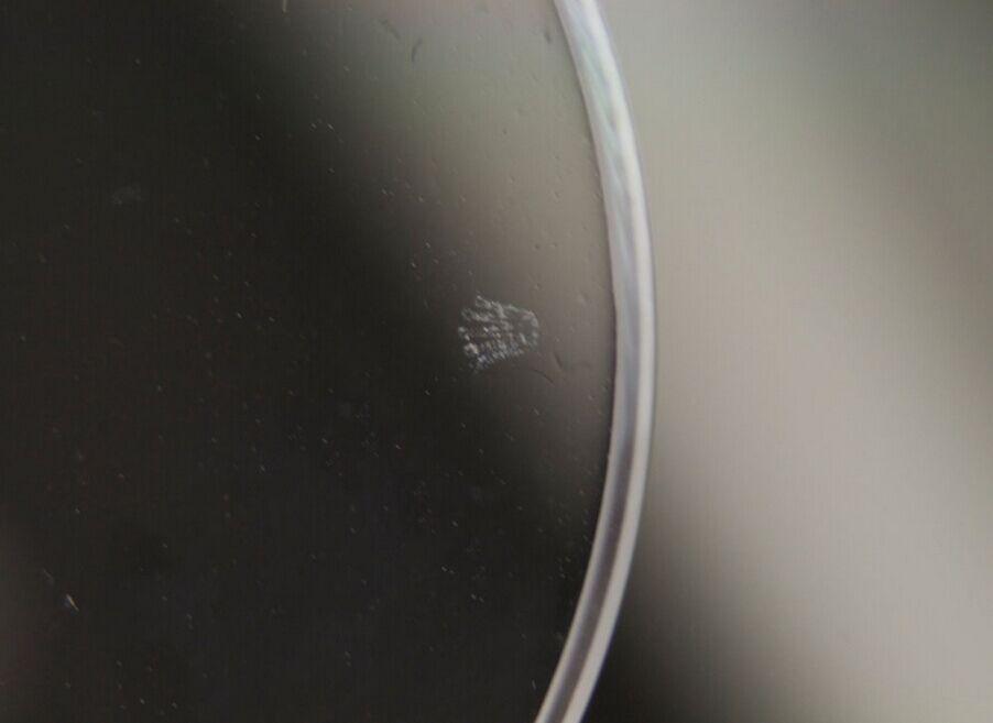 Rolex Logo at 6