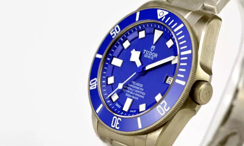 Tudor Blue Watch