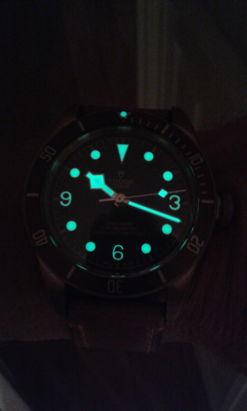 Tudor watch lume dial